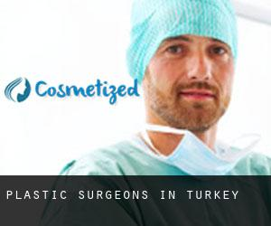 Plastic Surgeons in Turkey