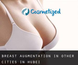 Breast Augmentation in Other Cities in Hubei